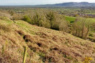 View of Llanymynech Rocks Nature Reserve and landscape beyond