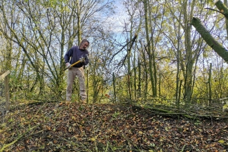 MWT Volunteer dead-hedging copyright Montgomeryshire Wildlife Trust