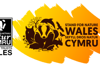 Stand for Nature Wales project logo