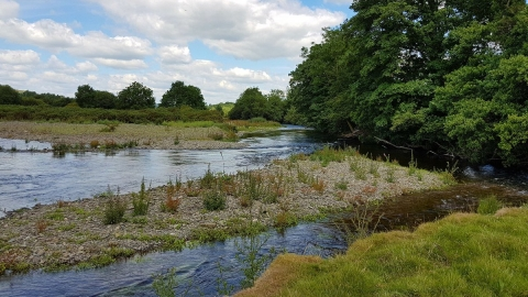 River Severn at Llandinam Gravels Nature Reserve
