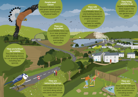 WT Local Wildlife Sites infographic