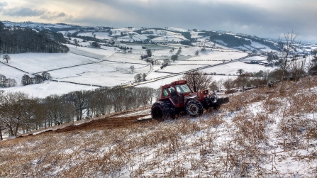 Contractor cutting bracken & scrub for PBFs 27th February 2018