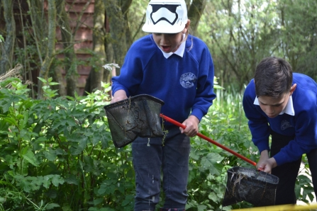 School children pond dipping