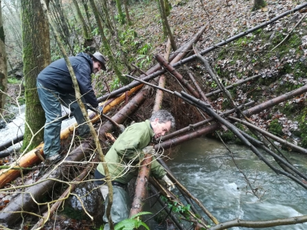 Creating a 'leaky dam' in Deri Woods copyright Montgomeryshire Wildlife Trust