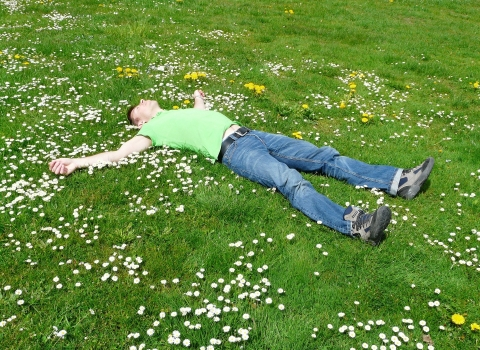 man at rest on flowery lawn